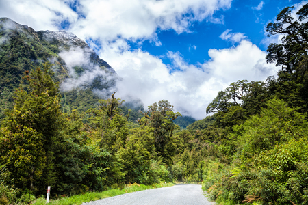 unsurfaced road: Gravel road through temperate rainforest at Fiordland National Park at the South Island of New Zealand with snow-capped steep mountain in background