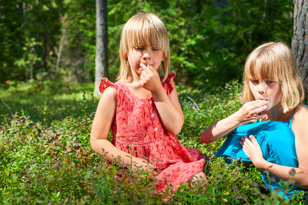 berry: Two little girls wearing blue and red summer dress picking and eating whortleberries in a forest