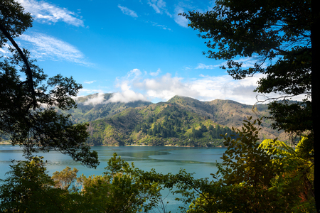 south island new zealand: Marlborough Sounds as seen from the Queen Charlotte Track in South Island New Zealand