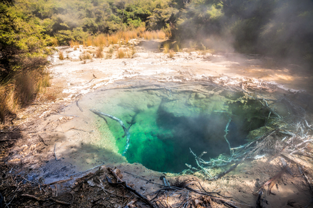 north island: Turquoise colored steaming hot mineral pool in native bush at Tokaanu thermal park near Taupo Lake in North Island New Zealand Stock Photo