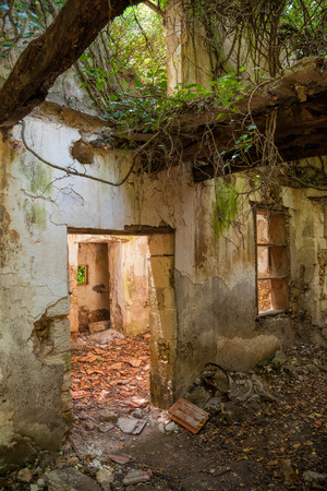 forsaken: Remains of abandoned house damaged by nature