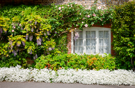 Traditional english country cottage decorated with plants and blooming flowers in rural Southern England UK