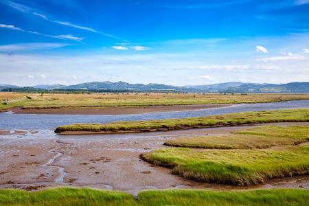 Moine Mhor National Nature Reserve near Kilmartin with large area of raised bog, saltmarsh, brackish grassland, alder carr, fen and woodland, Argyll and Bute, Scotland, UK Banque d'images - 100748496