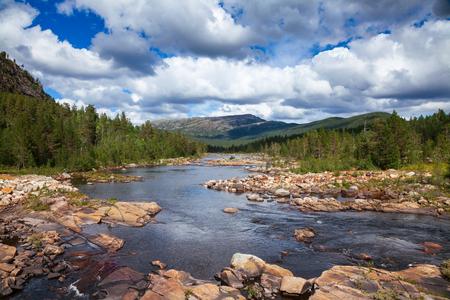 Norwegian summer landscape with Otra river Aust-Agder County, Norway, Scandinavia Standard-Bild - 118214776