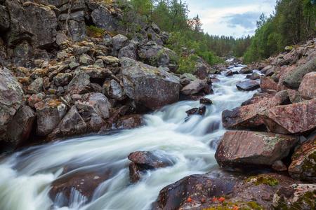 Rapids on small forest stream in Telemark County, Norway, Scandinavia Standard-Bild - 118214779