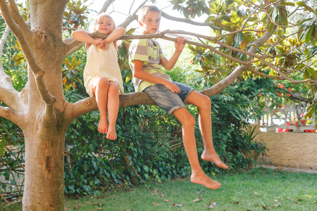 Portrait of brother and sister sitting on a tree in a summer garden enjoying summertime
