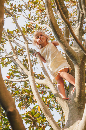 Elementary age girl climbing a tree branch while playing in a summer garden - child safety or risky play concept