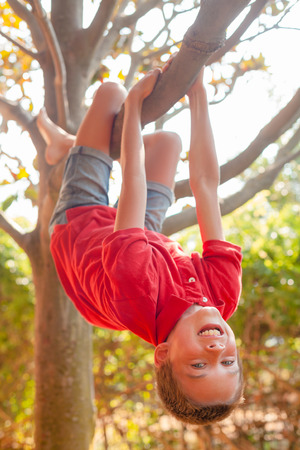 Portrait of carefree boy hanging upside down from a tree in a park enjoying summertime 写真素材