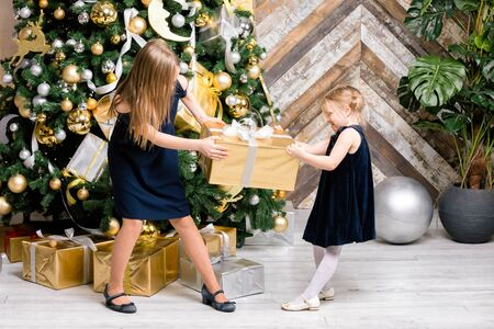 Two sisters wearing blue dresses standing next to the decorated Christmas tree pulling big golden wrapped gift box cannot share a present on boxing day