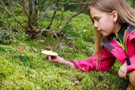 Elementary age girl found a potentially dangerous mushroom while playing in a backyard or camping in a forest- risk of child mushroom poisoning concept