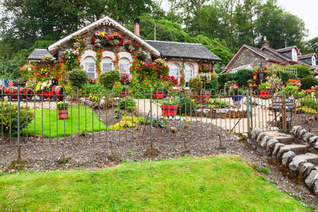 Country cottage over decorated with plants and blooming flowers in rural Scotland UK