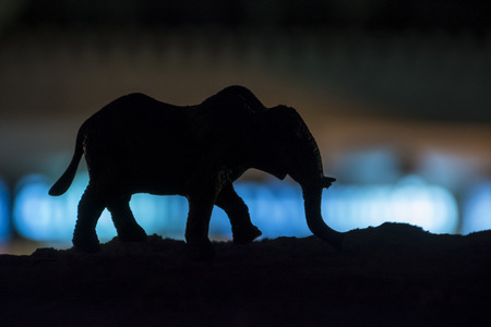Elephant silhouette, toy photography