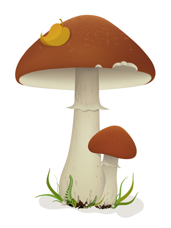 illustration of mushrooms with leaf and grass. Created using meshes and gradients Vector