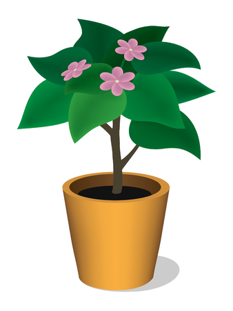 Green plant in a pot with pink flowers. Created using gradient meshes. Illustration