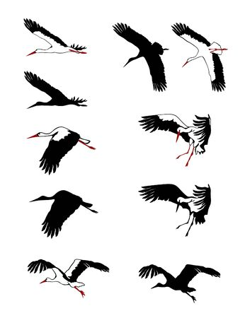 Flying storks silhouettes set. Vector illustration.