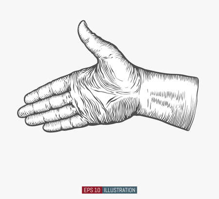 Hand drawn hand. Greeting gesture. Engraved style vector illustration. Element for you design works.