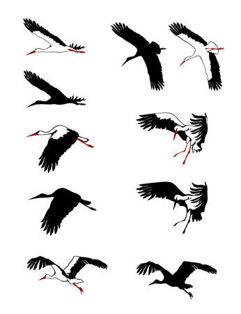 Flying storks silhouettes set. Vector illustration.