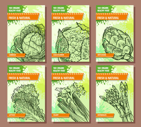 Vegetables banners set. Cabbage, cauliflower, artichoke, lettuce, celery, asparagus. Hand drawn fresh and natural vegetables. Template for your design works. Vector illustration.