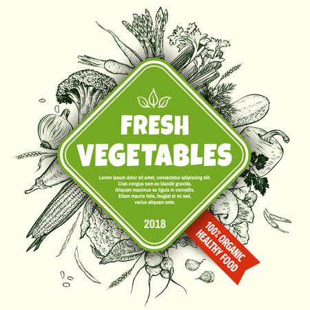 Fresh vegetables banner concept. Hand drawn vegetables set. Template for your design works. Engraved style vector illustration. Vektorové ilustrace