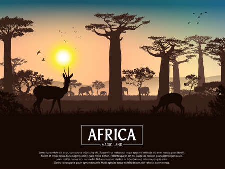 African landscape. Grass, trees, birds, animals silhouettes. Abstract nature background. Template for your design works. Vector illustration.  イラスト・ベクター素材