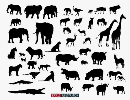 African animals silhouettes set. Ostrich, giraffe, antelope, wildebeest, elephant, lion, cheetah, crocodile, rhino, zebra, hippo, buffalo. Template for your design works. Vector illustration. Ilustração