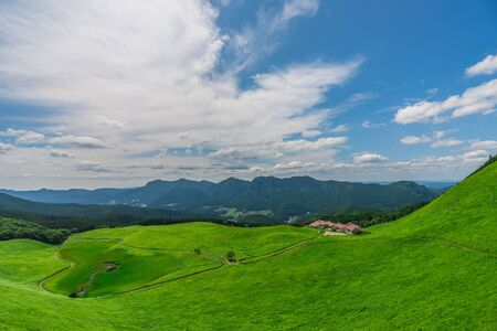 Greengrass against blue sky at Soni plateau,Nara Prefecture,Japan