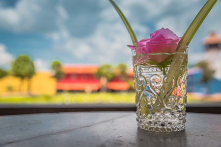 Beautiful pink flower in glass vase.