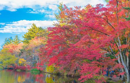 Delightful autumn colors of Kumoba pond in Karuizawa,Japan Stock Photo