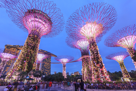 SINGAPORE -MAY 14: Night view of Supertree Grove at Gardens by the Bay on May 14, 2016 in Singapore. Spanning 101 hectares of reclaimed land in central Singapore, adjacent to the Marina Reservoir Editorial