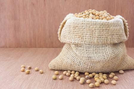 leche de soya: Soja en el saco del bolso de c��amo con leche de soja en la configuraci�n de vidrio sobre la mesa de madera.