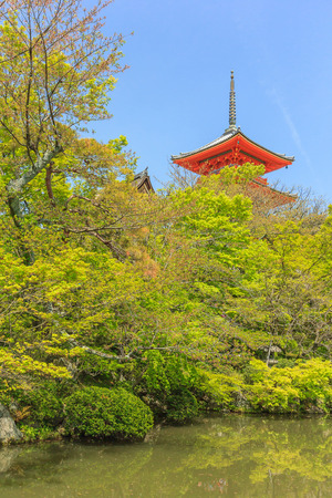 dera: The Pagoda at Kiyomizu-dera temple with green leaves. The temple is part of the Historic Monuments of Ancient Kyoto UNESCO World Heritage.