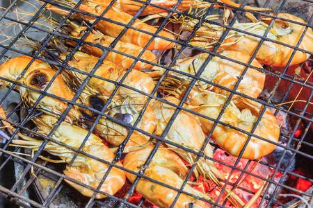 Fresh river shrimp grilled, Fresh river prawn grilled in steel grating on charcoal stove.