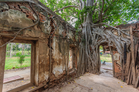 unseen: Unseen Thailand, Ruins of old temple with a Bodhi tree root, Wat Sang Kra Tai, Angthong, Thailand (Public property)