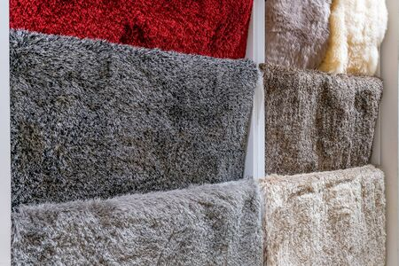 Colorful carpet samples in the shop store