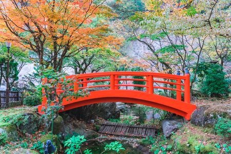 Red bridge in japanese green park with autumn color leaves, Japanese autumn fall Archivio Fotografico - 133871352