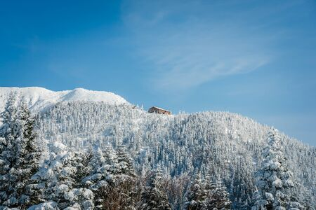 Snow covered pine trees on the background of mountain peaks. Panoramic view of the snowy winter landscape at Shinhotara Ropeway, Japan Фото со стока