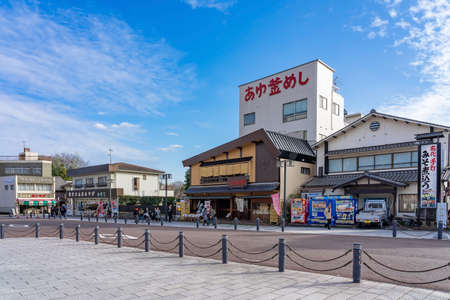 INUYAMA, JAPAN - JANUARY 18, 2020: Inuyama castle and the garden in front of the castle in Aichi, Japan. This is a famous place of cherry blossoms in Inuyama City and there are about 40 cherry trees here. Редакционное
