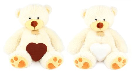 two white teddy bears and two honey-cakes: chocolate and sugar in the form of hearts over white