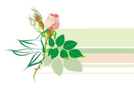 twists: Horisontal Floral element