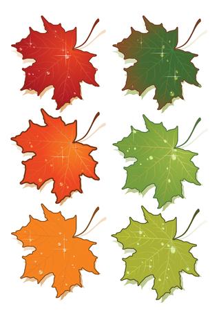 Ilustración vectorial de maple leafs conjunto.