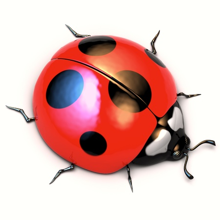 A 3d illustration of ladybird isolated on white background. Stock Illustration - 12515532
