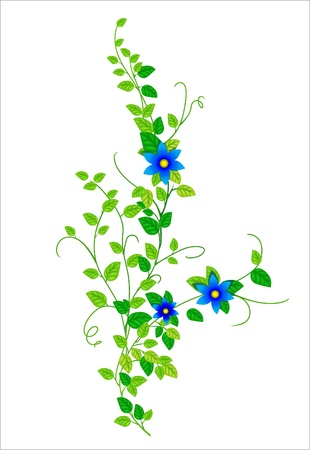 blossomed: Illustration of branches with flowers on a white background