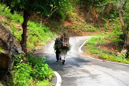 Rear view of two unrecognizable person walking through country road located in Rural India carrying woods with them