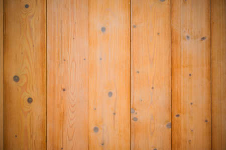 Pine wood texture. Wall surface