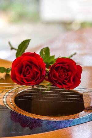 single songs: Guitar and rose