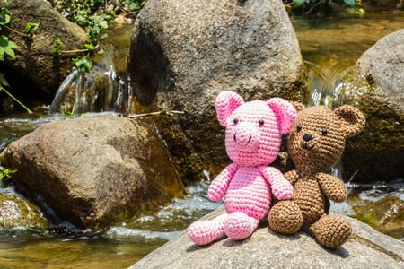 bear doll: pig and bear doll on nature background