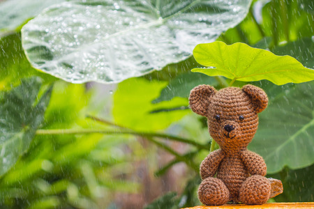 Single bear doll in the rain Stock Photo