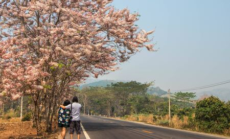 man and woman standing under pink Cassia flower tree.