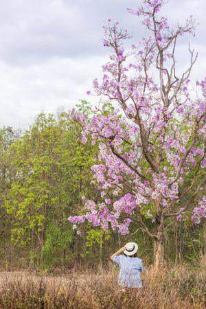woman standing under purple flower tree.