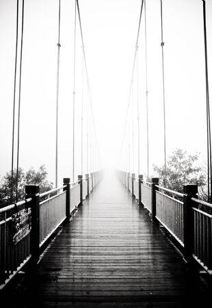 bridge in the forest: view on pedestrian wooden bridge in mist
